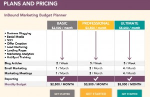 Should I publish Pricing